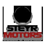 STEYR MOTOR_WITH SHADOWw